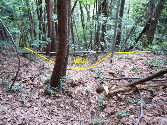 小坂城(山形村) (7)