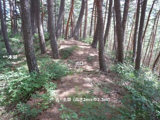 竹田城(山形村) (13)