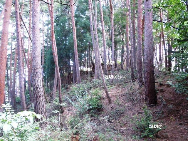 竹田城(山形村) (34)