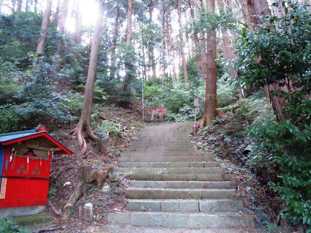 朝日山城(遠州) (5)