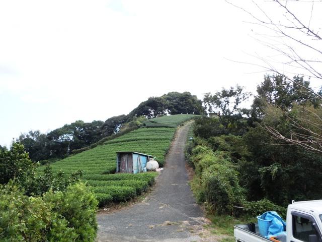 朝日山城(遠州) (14)