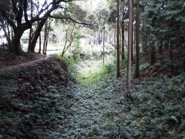 諏訪原城(遠江) (104)