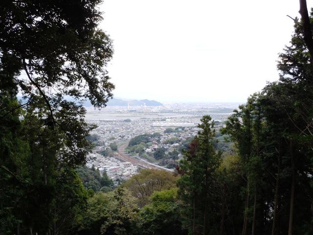 諏訪原城(遠江) (83)