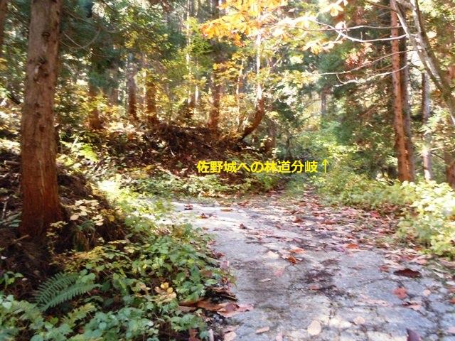 佐野城(白馬村) (88)