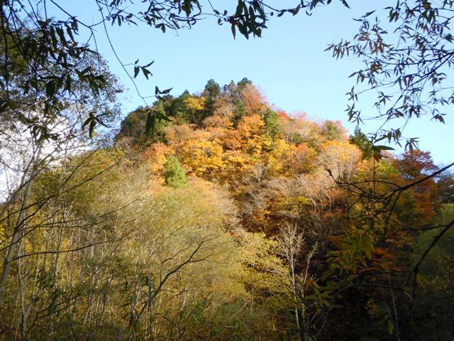 飯田城(白馬村) (64)
