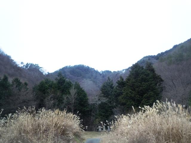 仁熊城遠景