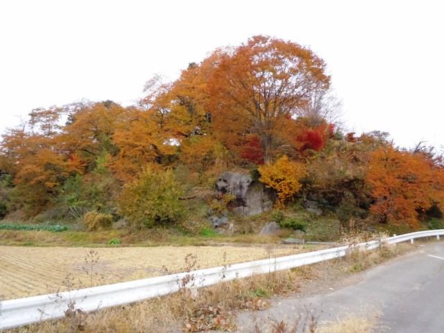 宝生寺山砦 (25)