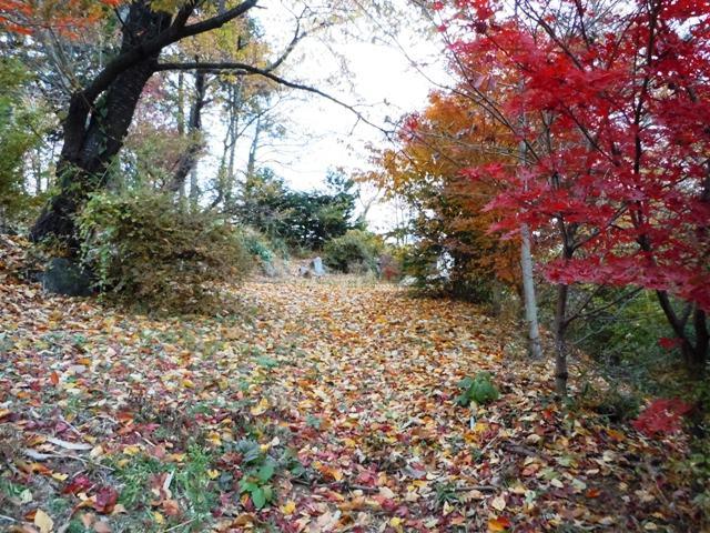 宝生寺山砦 (4)