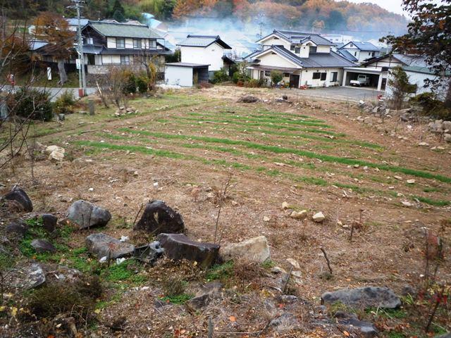 宝生寺山砦 (19)