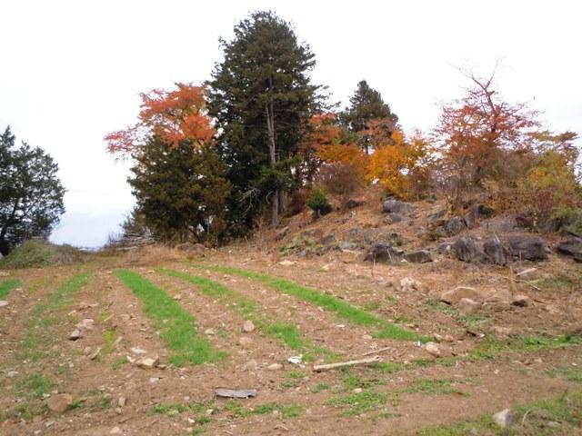 宝生寺山砦 (20)