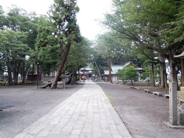 稲荷山城 (13)