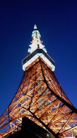 20090828-tokyotower.jpg