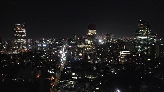 20090828-tokyotower-yakei-3.jpg