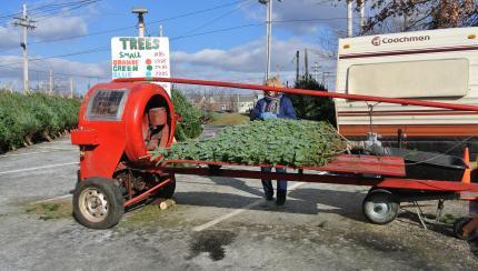 Christmastreeのpackage