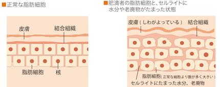 soshibi_page1-1.jpg