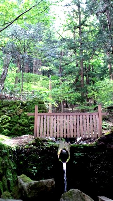 120508諏訪神社fb1