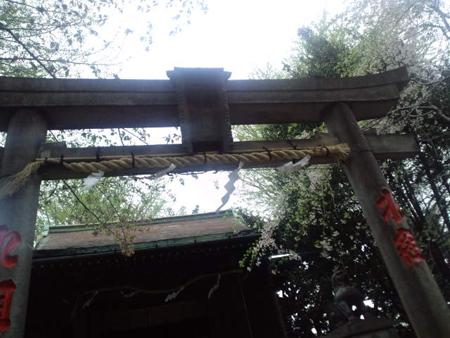 120420谷中 (48)