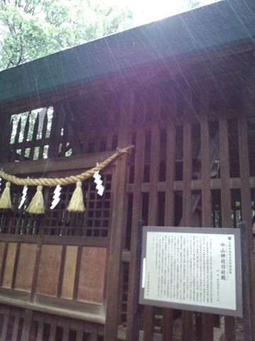 120503氷川神社巡り (29)