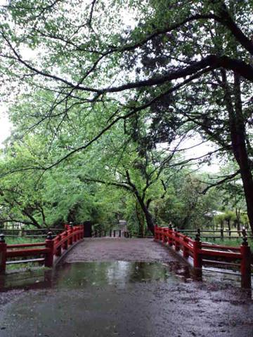 120503氷川神社巡り (38)