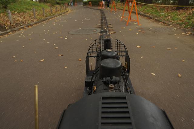 日野スポーツ公園を走る汽車
