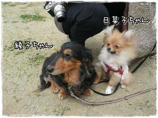 綾ちゃん&日菜ちゃん