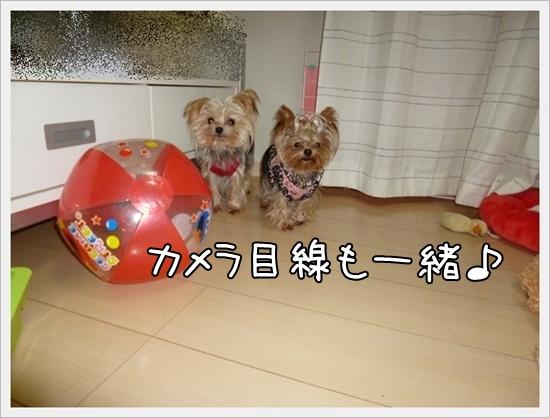 あずモコ1 (3)