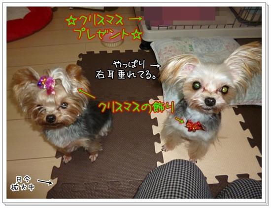 あずモコ (3)