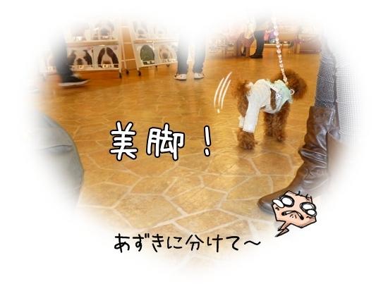 ひよりちゃん3