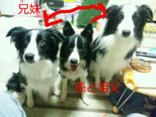 moblog_d65ba426.jpg