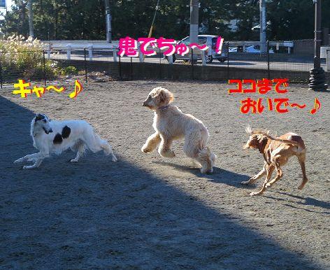 e_20131213010848fba.jpg