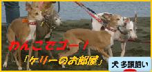 itabana3_20131214205408fea.png