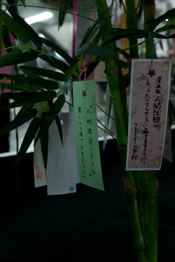 20120708-55.jpg