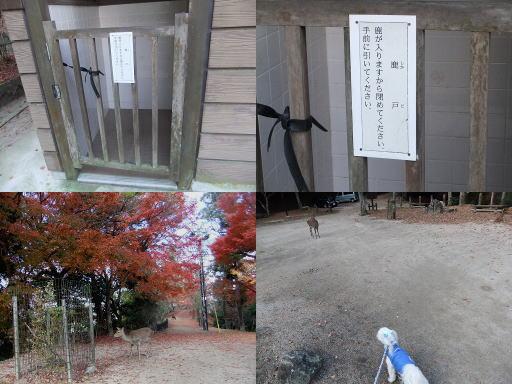 20121124-04.jpg