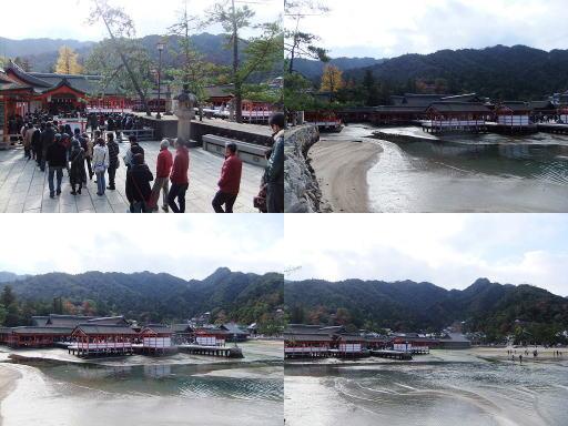 20121124-07.jpg
