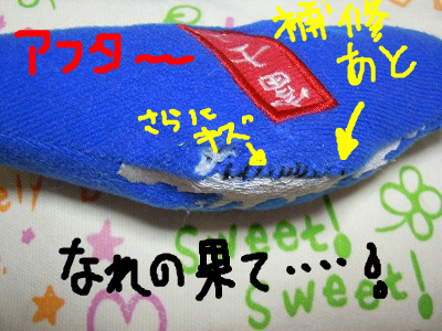 snap_rikineechan_20129344737.jpg