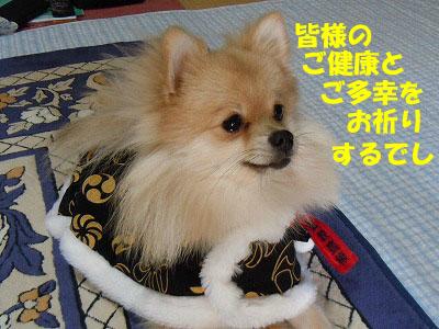 snap_rikineechan_201311235716.jpg