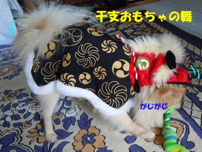 snap_rikineechan_2013120131.jpg