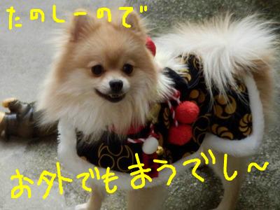 snap_rikineechan_20131202345.jpg
