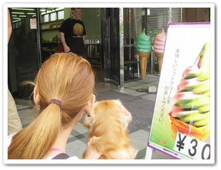 9月27鎌倉16