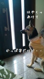 201206191038534da.jpg