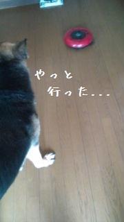 201206231019314dd.jpg