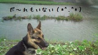 20120715104959fbf.jpg