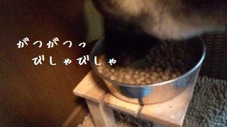 2012071510500155b.jpg