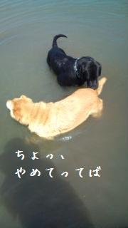 20120903095823fab.jpg