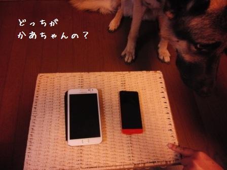 20121001100841e0e.jpg