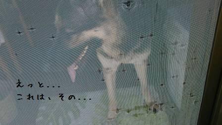 20121003101628ef2.jpg