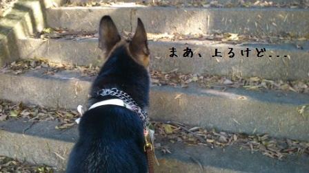 20121021104856c3e.jpg