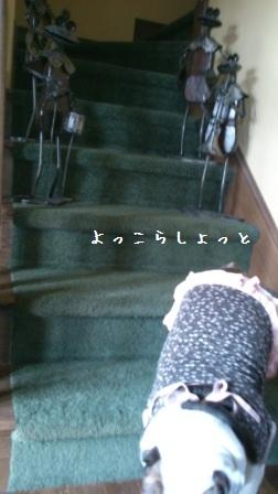 2012111311495333f.jpg