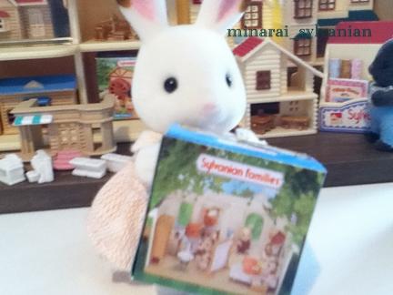 ミニチュア箱ウサギ