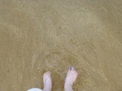 海(豚足)